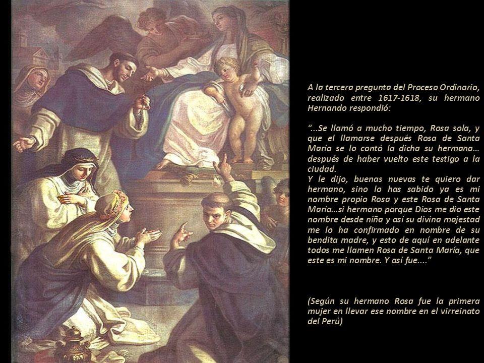 A la tercera pregunta del Proceso Ordinario, realizado entre 1617-1618, su hermano Hernando respondió: ------------------------------ ...Se llamó a mucho tiempo, Rosa sola, y que el llamarse después Rosa de Santa María se lo contó la dicha su hermana… después de haber vuelto este testigo a la ciudad.