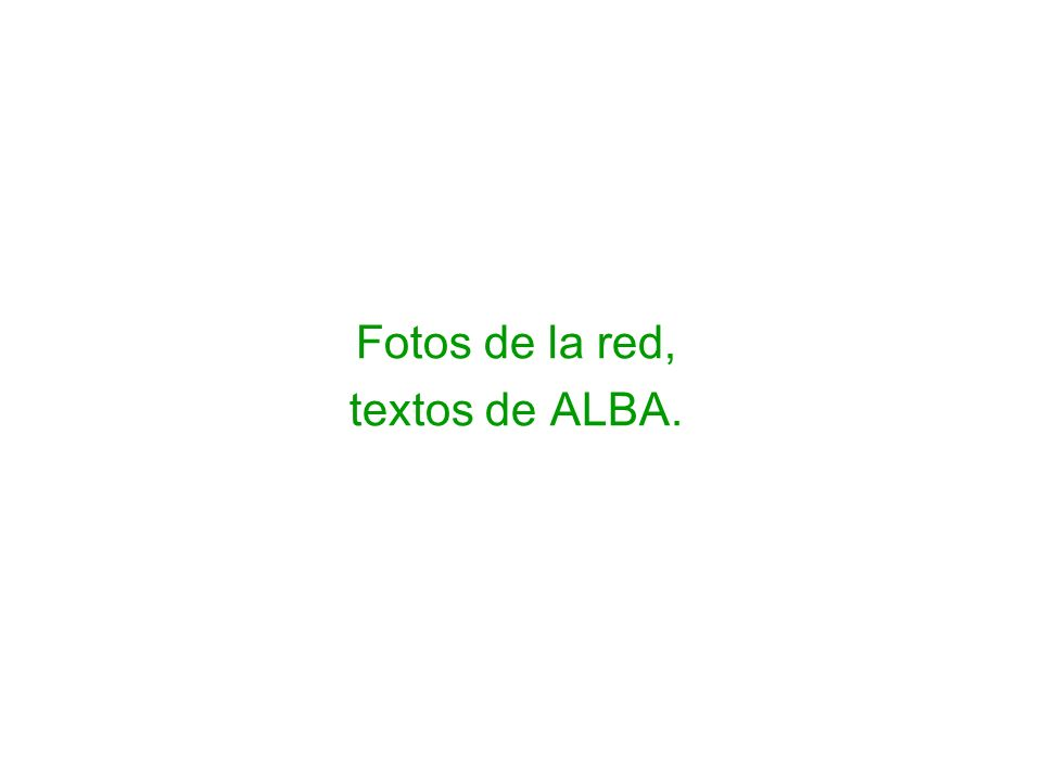 Fotos de la red, textos de ALBA.