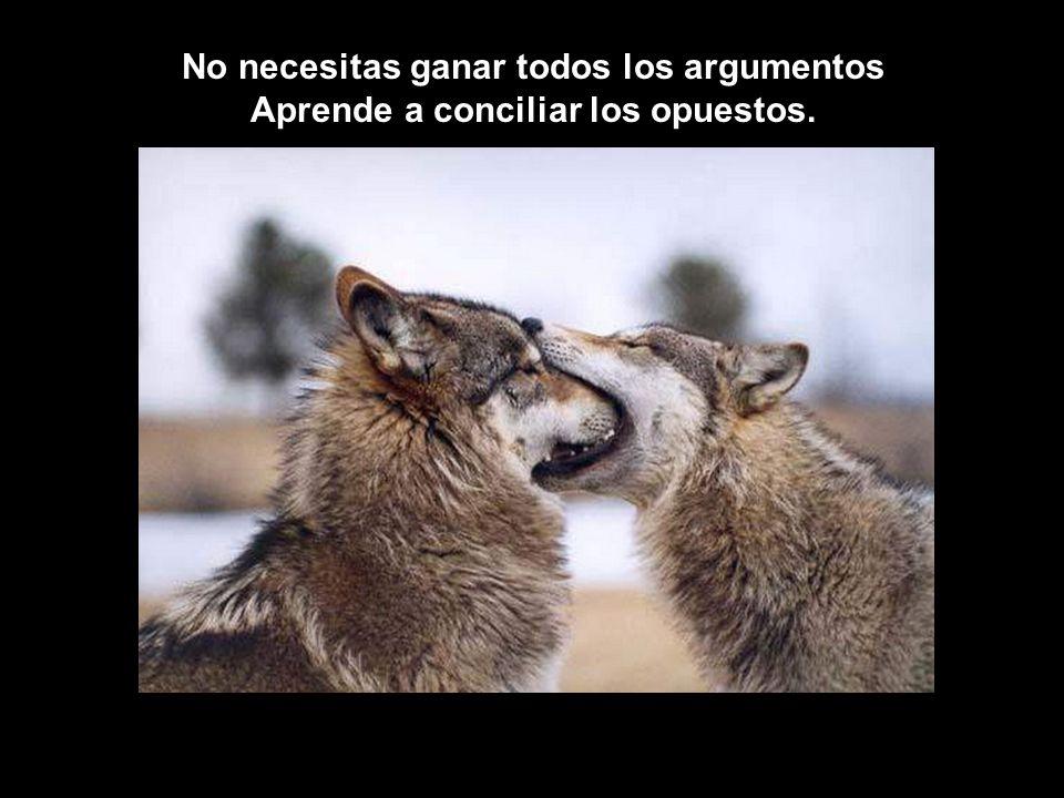 No necesitas ganar todos los argumentos