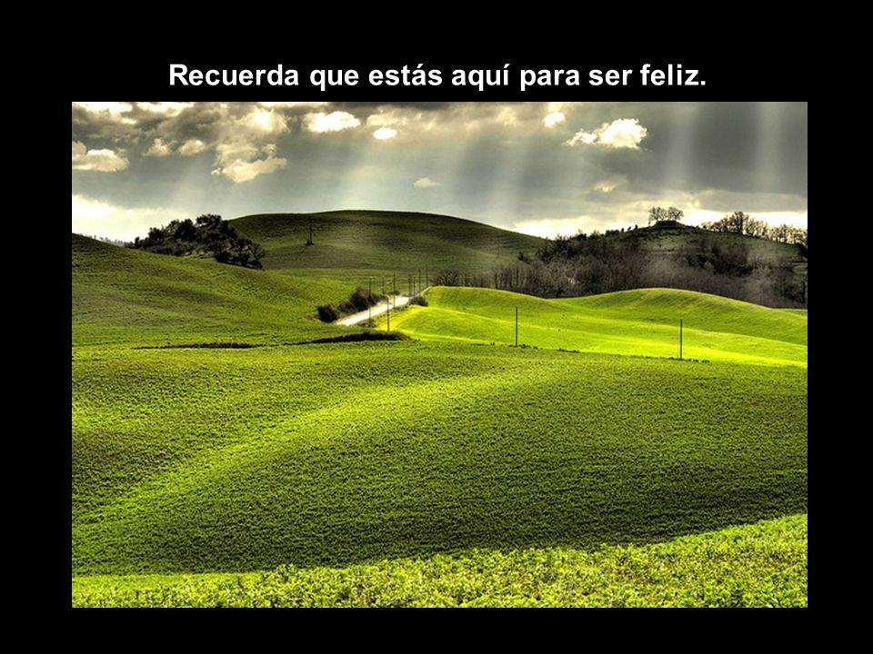 Recuerda que estás aquí para ser feliz.