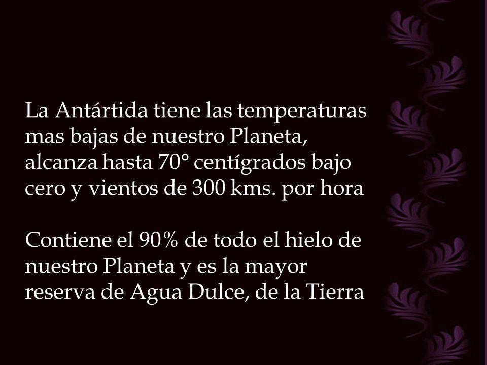 La Antártida tiene las temperaturas mas bajas de nuestro Planeta, alcanza hasta 70° centígrados bajo cero y vientos de 300 kms. por hora