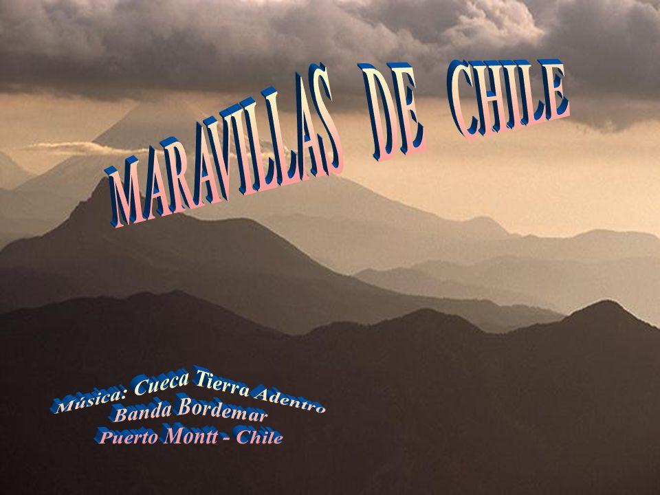 Música: Cueca Tierra Adentro