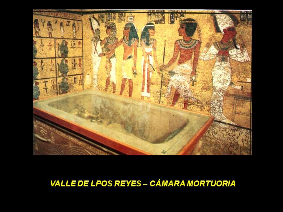 VALLE DE LPOS REYES – CÁMARA MORTUORIA