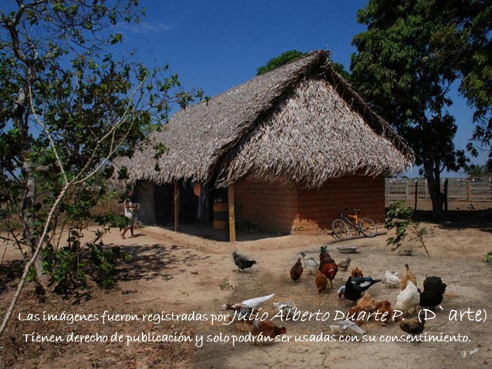 Las imágenes fueron registradas por Julio Alberto Duarte P. (D`arte)