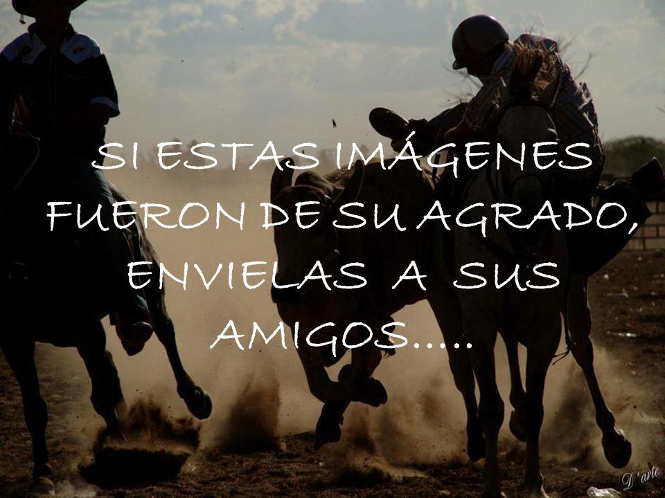 SI ESTAS IMÁGENES FUERON DE SU AGRADO, ENVIELAS A SUS AMIGOS…..