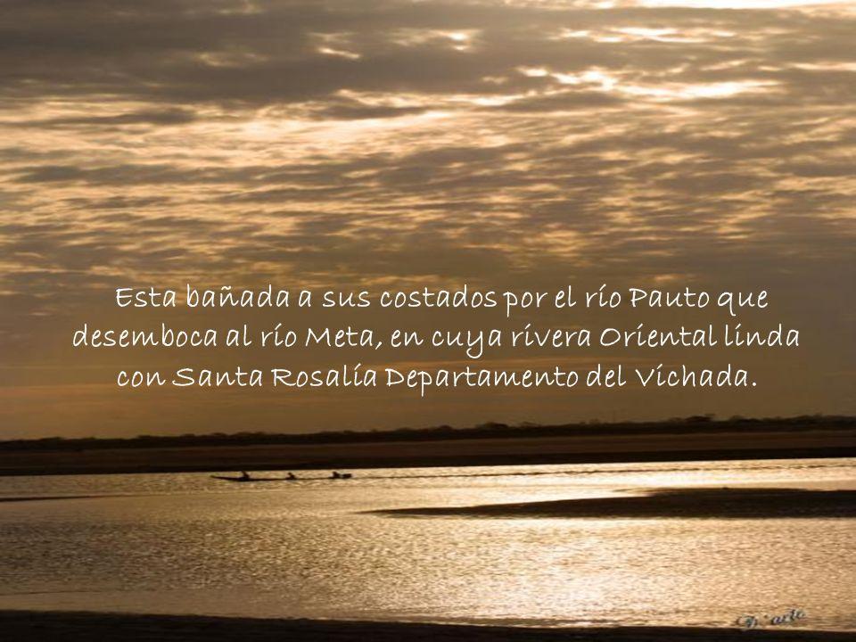 Esta bañada a sus costados por el río Pauto que desemboca al río Meta, en cuya rivera Oriental linda con Santa Rosalía Departamento del Vichada.