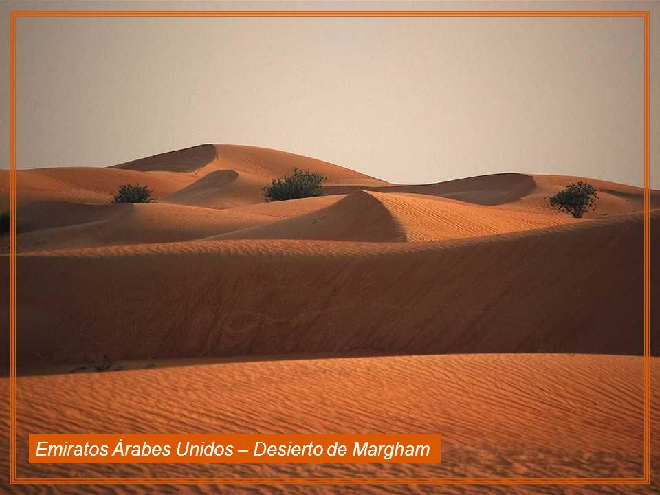 Emiratos Árabes Unidos – Desierto de Margham