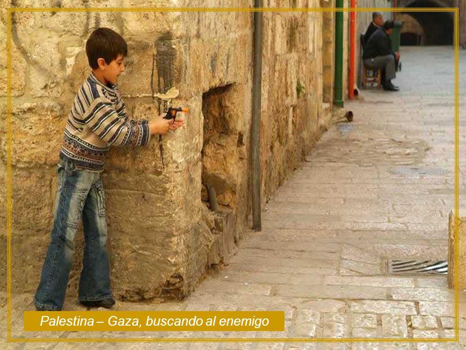 Palestina – Gaza, buscando al enemigo