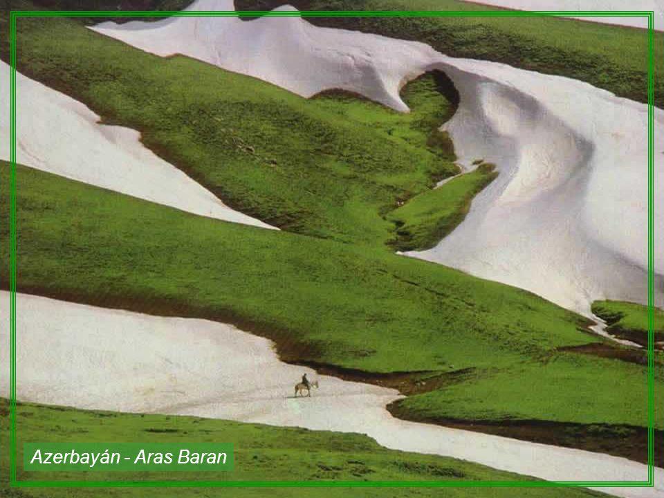 Azerbayán - Aras Baran