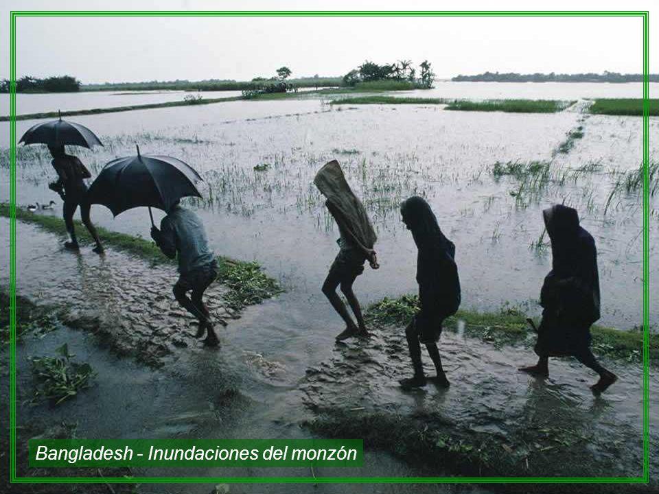 Bangladesh - Inundaciones del monzón