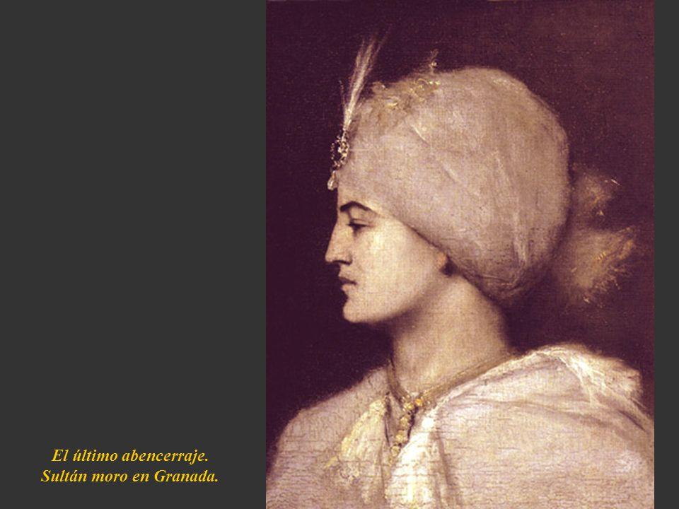 El último abencerraje. Sultán moro en Granada.