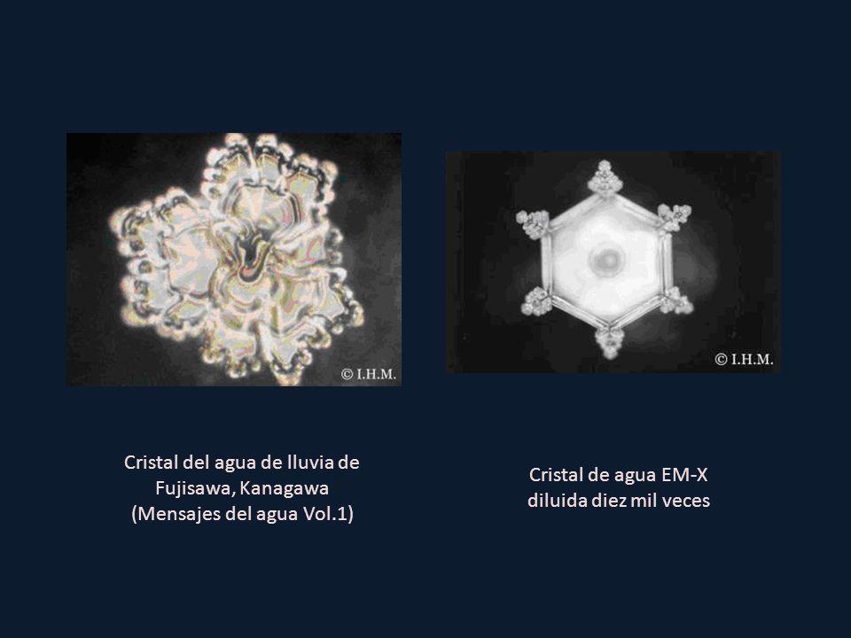Cristal de agua EM-X diluida diez mil veces