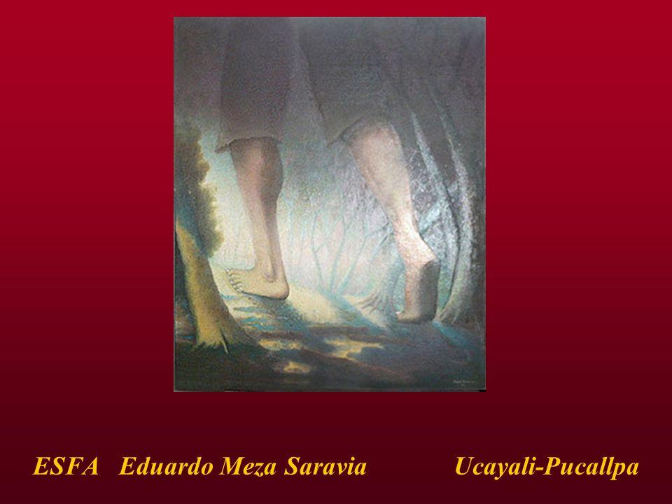 ESFA Eduardo Meza Saravia Ucayali-Pucallpa