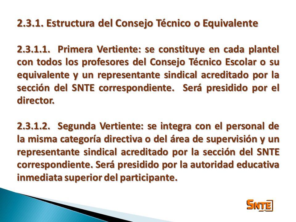 2.3.1. Estructura del Consejo Técnico o Equivalente