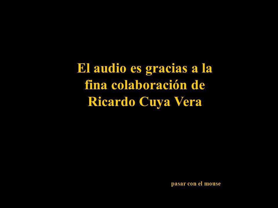 El audio es gracias a la fina colaboración de Ricardo Cuya Vera