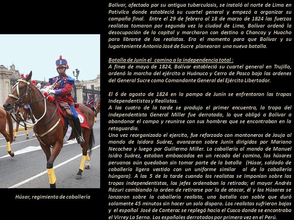 Húsar, regimiento de caballería