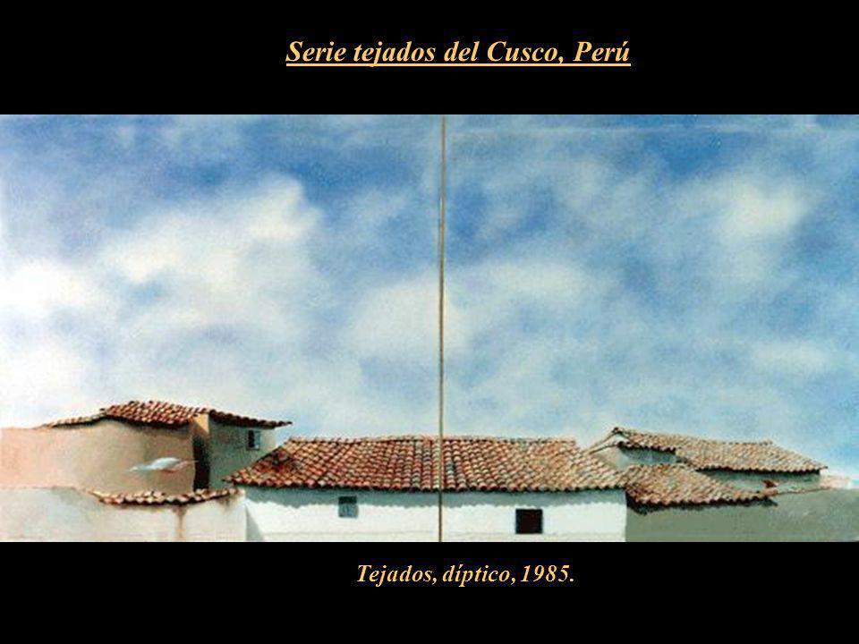 Serie tejados del Cusco, Perú