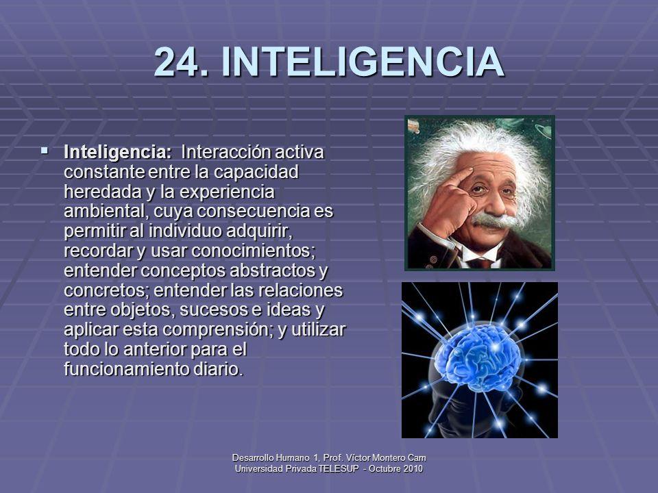 24. INTELIGENCIA