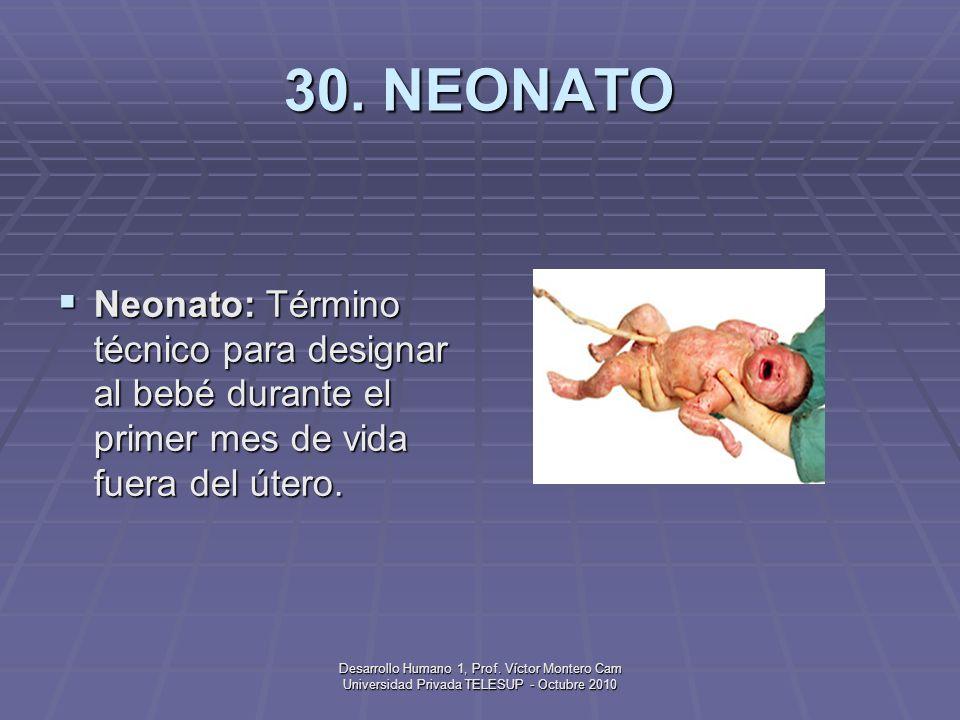 30. NEONATO Neonato: Término técnico para designar al bebé durante el primer mes de vida fuera del útero.