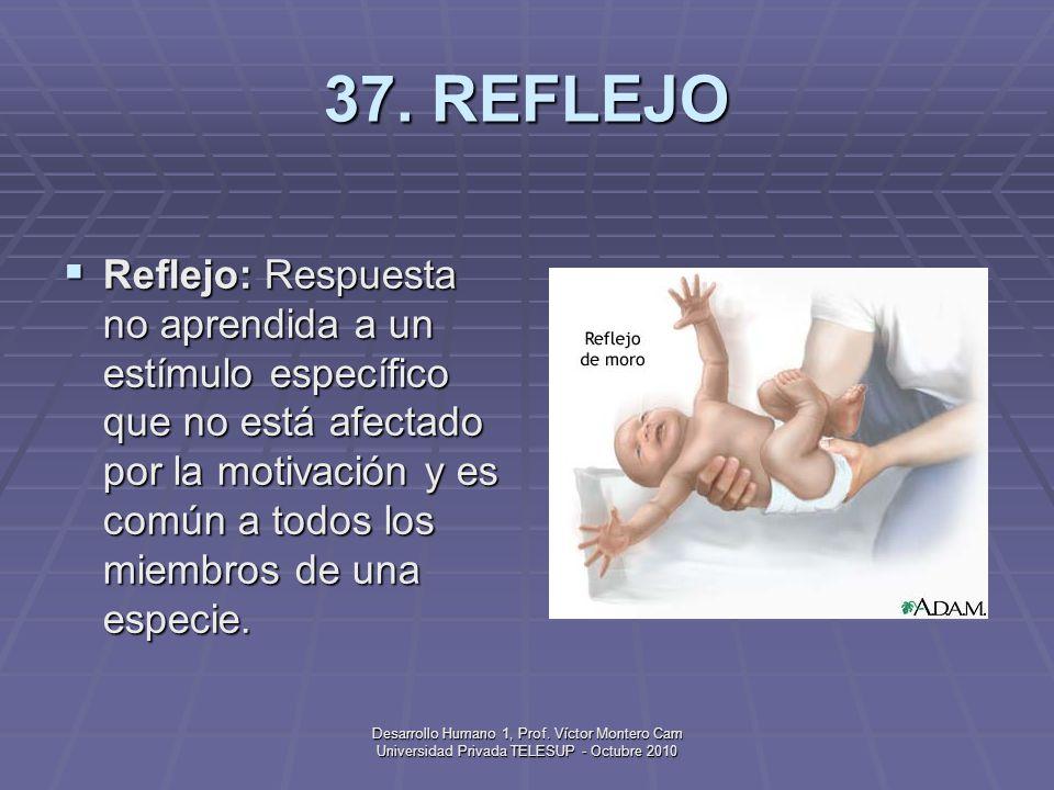 37. REFLEJO
