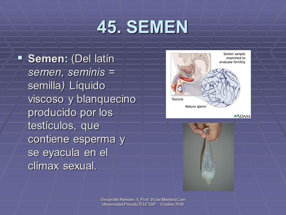 45. SEMEN
