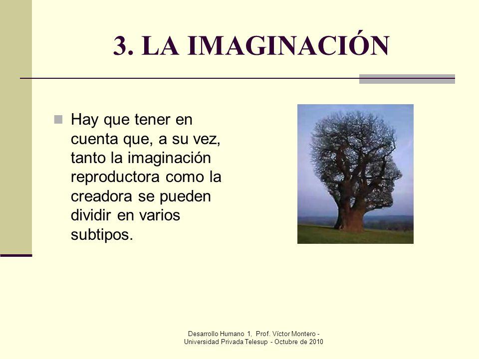 3. LA IMAGINACIÓN Hay que tener en cuenta que, a su vez, tanto la imaginación reproductora como la creadora se pueden dividir en varios subtipos.