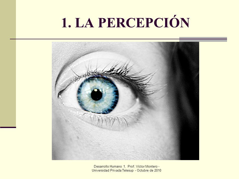1. LA PERCEPCIÓN Desarrollo Humano 1, Prof.