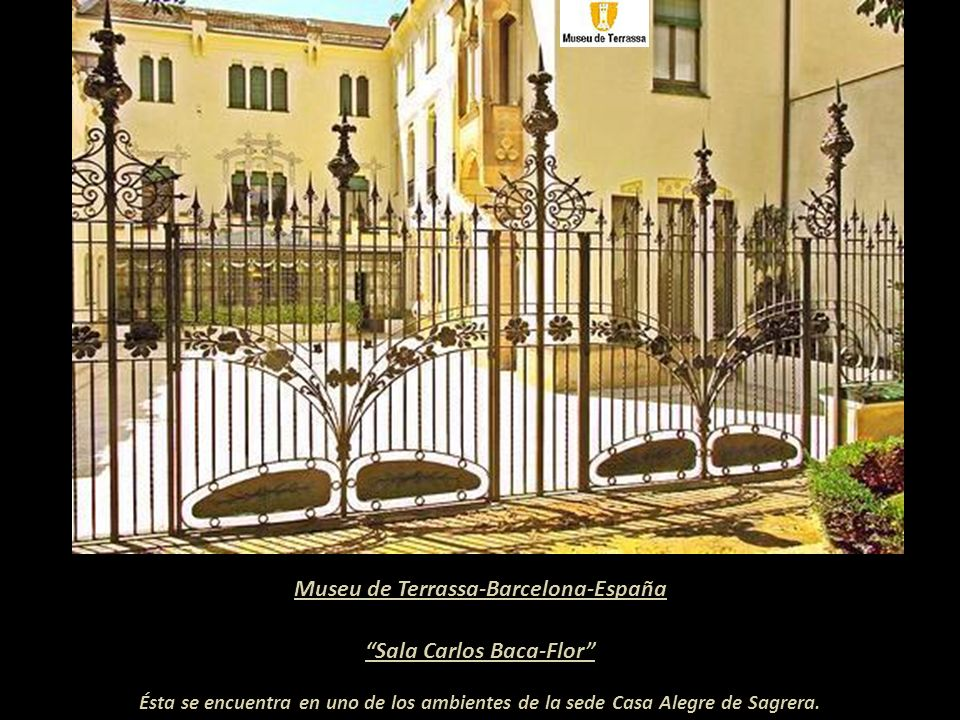 Museu de Terrassa-Barcelona-España Sala Carlos Baca-Flor
