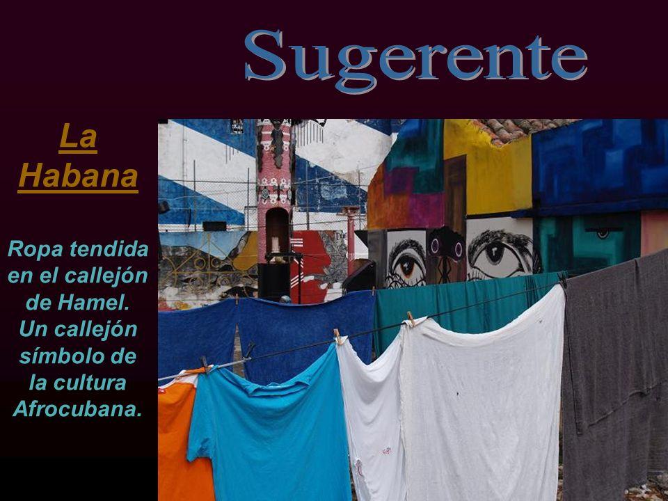 SugerenteLa Habana Ropa tendida en el callejón de Hamel.