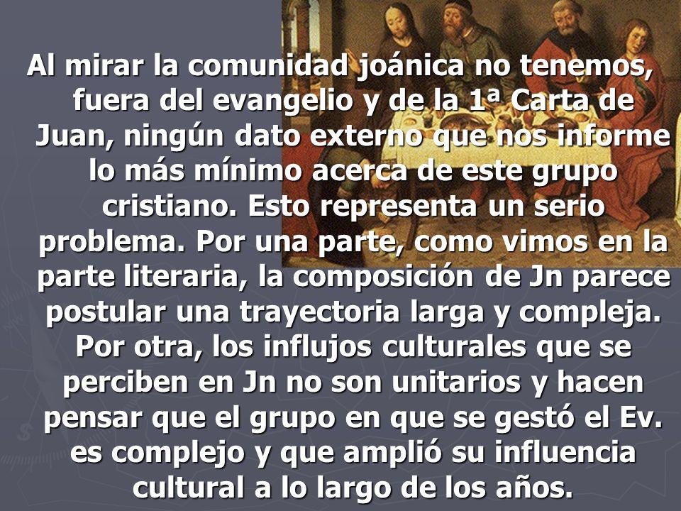 Al mirar la comunidad joánica no tenemos, fuera del evangelio y de la 1ª Carta de Juan, ningún dato externo que nos informe lo más mínimo acerca de este grupo cristiano.