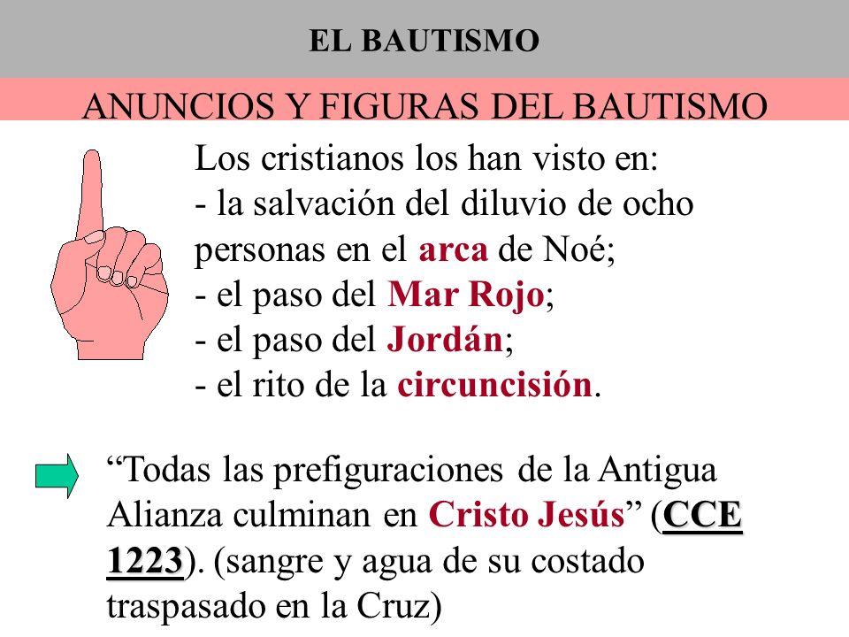ANUNCIOS Y FIGURAS DEL BAUTISMO