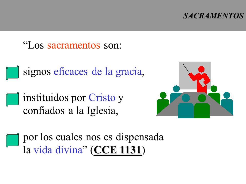 signos eficaces de la gracia, instituidos por Cristo y