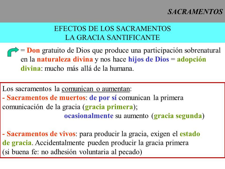 EFECTOS DE LOS SACRAMENTOS LA GRACIA SANTIFICANTE