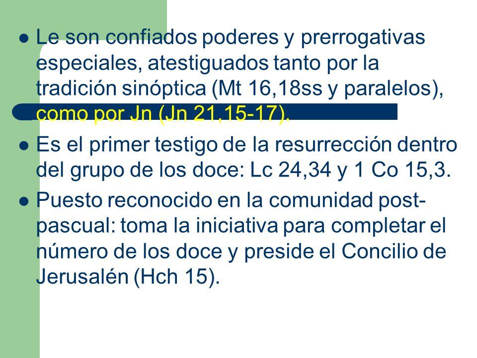 Le son confiados poderes y prerrogativas especiales, atestiguados tanto por la tradición sinóptica (Mt 16,18ss y paralelos), como por Jn (Jn 21,15-17).