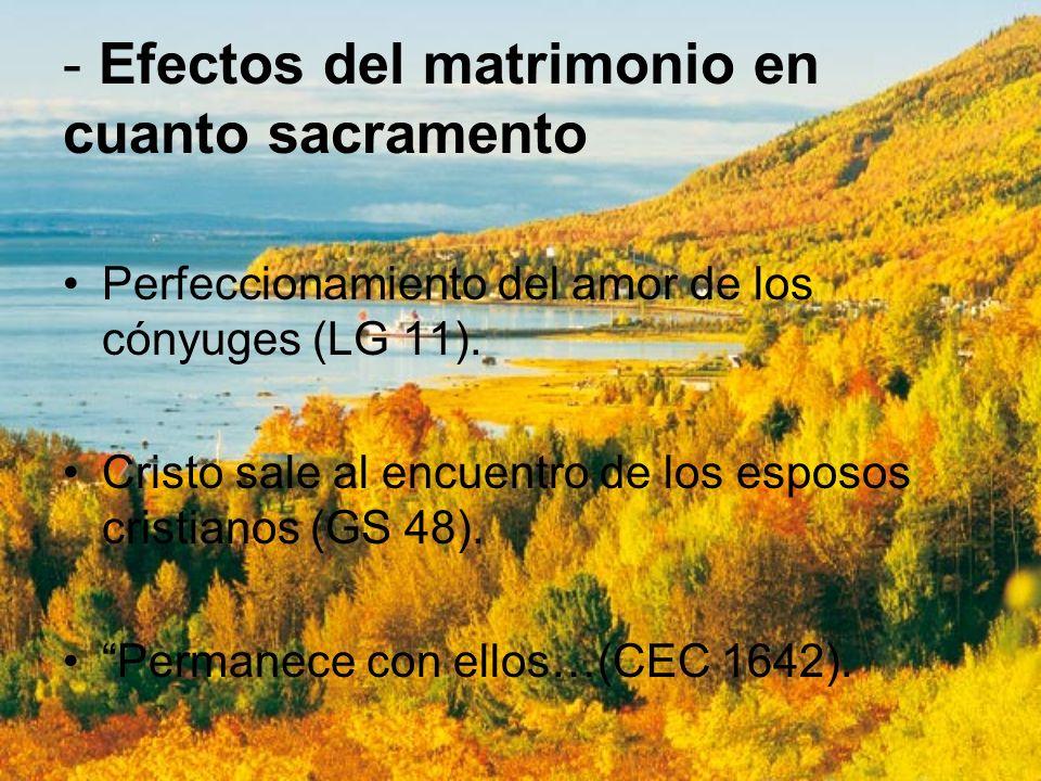 - Efectos del matrimonio en cuanto sacramento