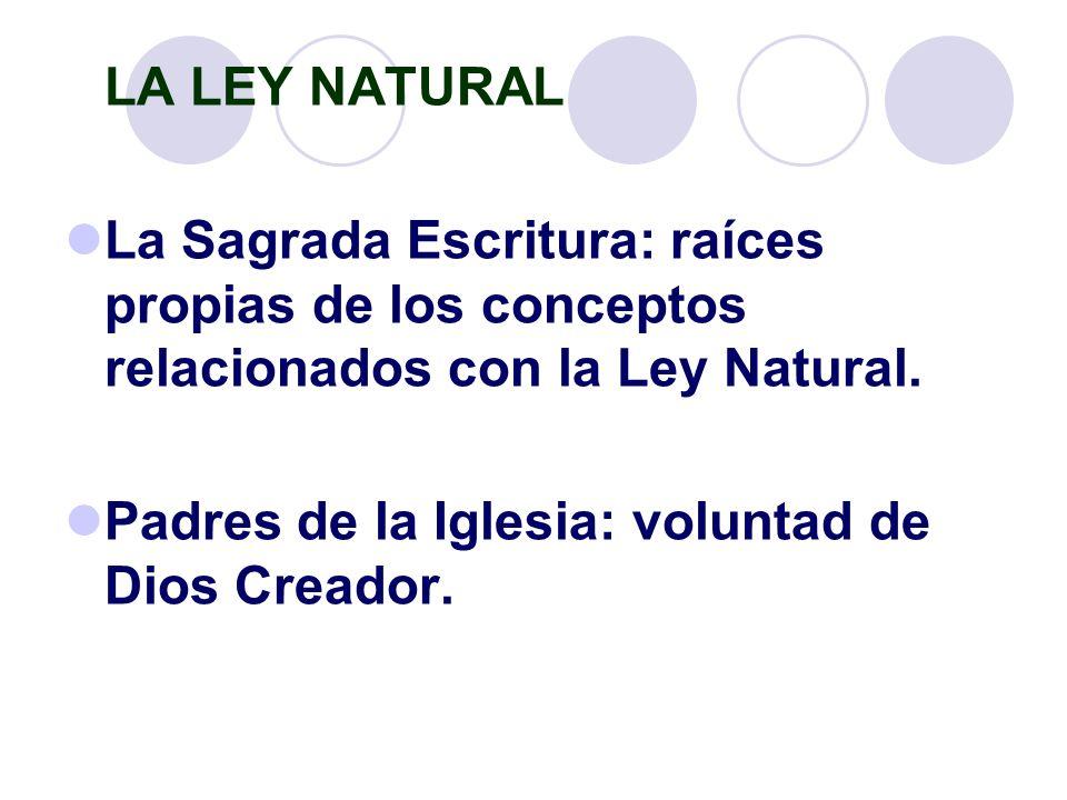 LA LEY NATURAL La Sagrada Escritura: raíces propias de los conceptos relacionados con la Ley Natural.
