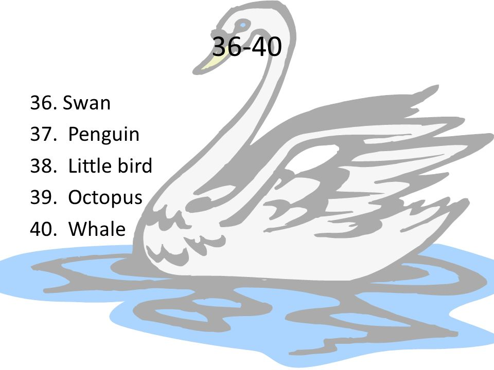 36-40 36. Swan 37. Penguin 38. Little bird 39. Octopus 40. Whale