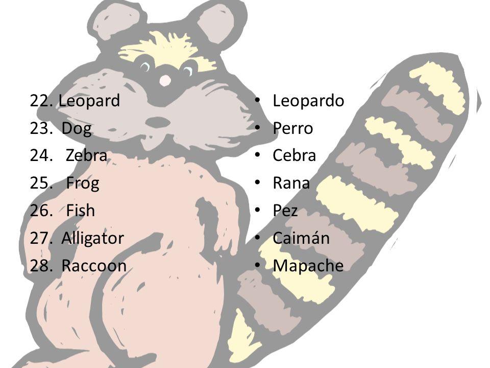 22. Leopard Dog Zebra Frog Fish Alligator Raccoon Leopardo Perro Cebra Rana Pez Caimán Mapache