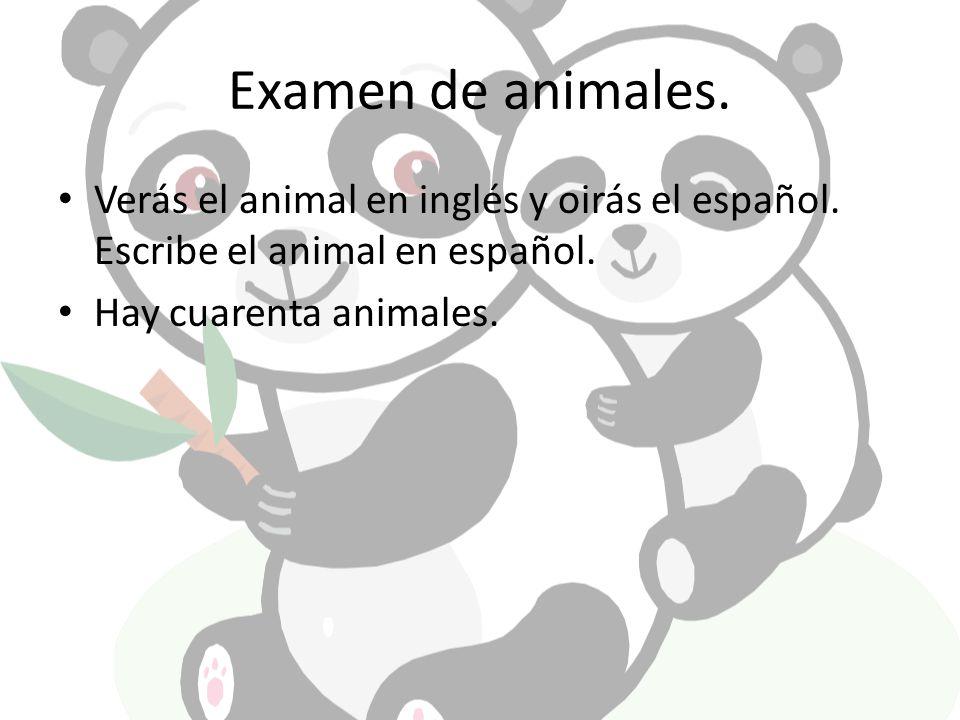 Examen de animales. Verás el animal en inglés y oirás el español.