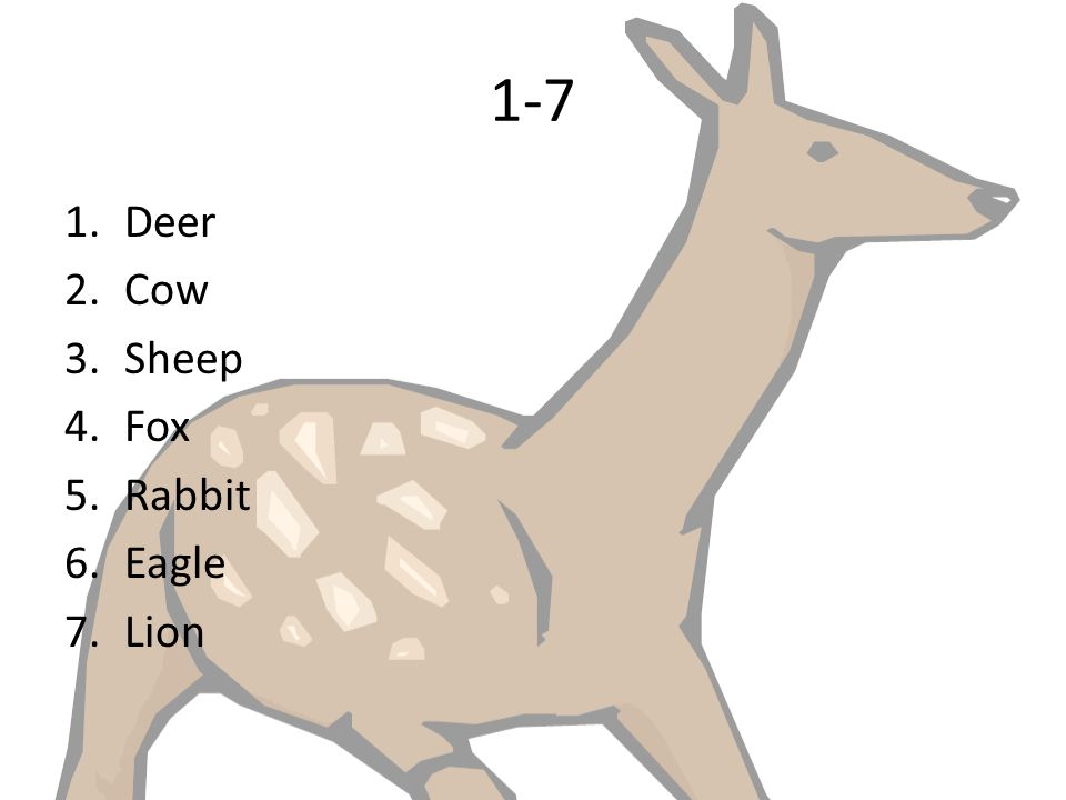 1-7 Deer Cow Sheep Fox Rabbit Eagle Lion