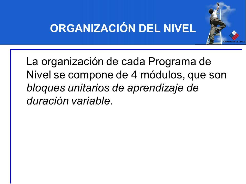 ORGANIZACIÓN DEL NIVEL