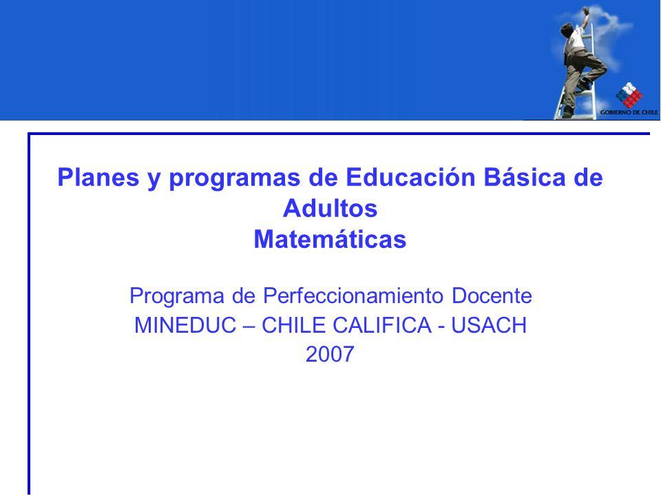 Planes y programas de Educación Básica de Adultos Matemáticas