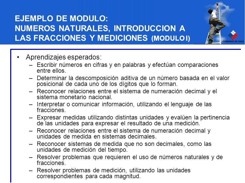 EJEMPLO DE MODULO: NUMEROS NATURALES, INTRODUCCION A LAS FRACCIONES Y MEDICIONES (MODULO I)