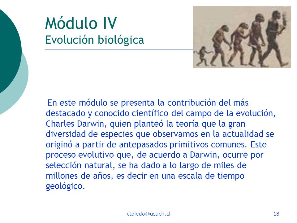 Módulo IV Evolución biológica