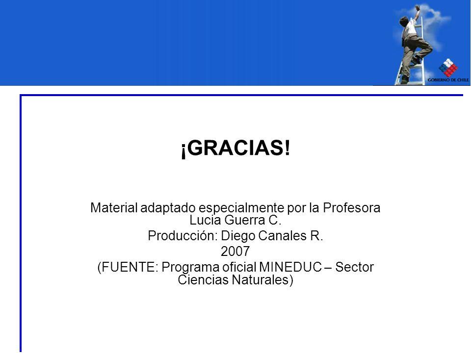 ¡GRACIAS!Material adaptado especialmente por la Profesora Lucia Guerra C. Producción: Diego Canales R.