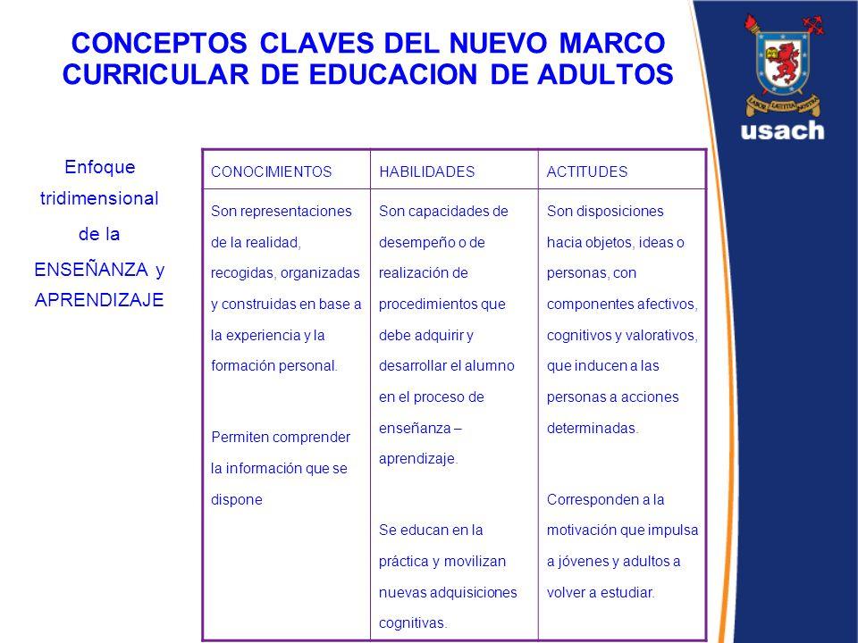 CONCEPTOS CLAVES DEL NUEVO MARCO CURRICULAR DE EDUCACION DE ADULTOS