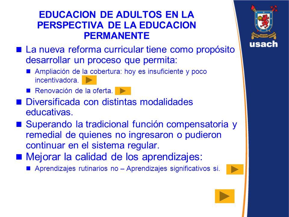 EDUCACION DE ADULTOS EN LA PERSPECTIVA DE LA EDUCACION PERMANENTE