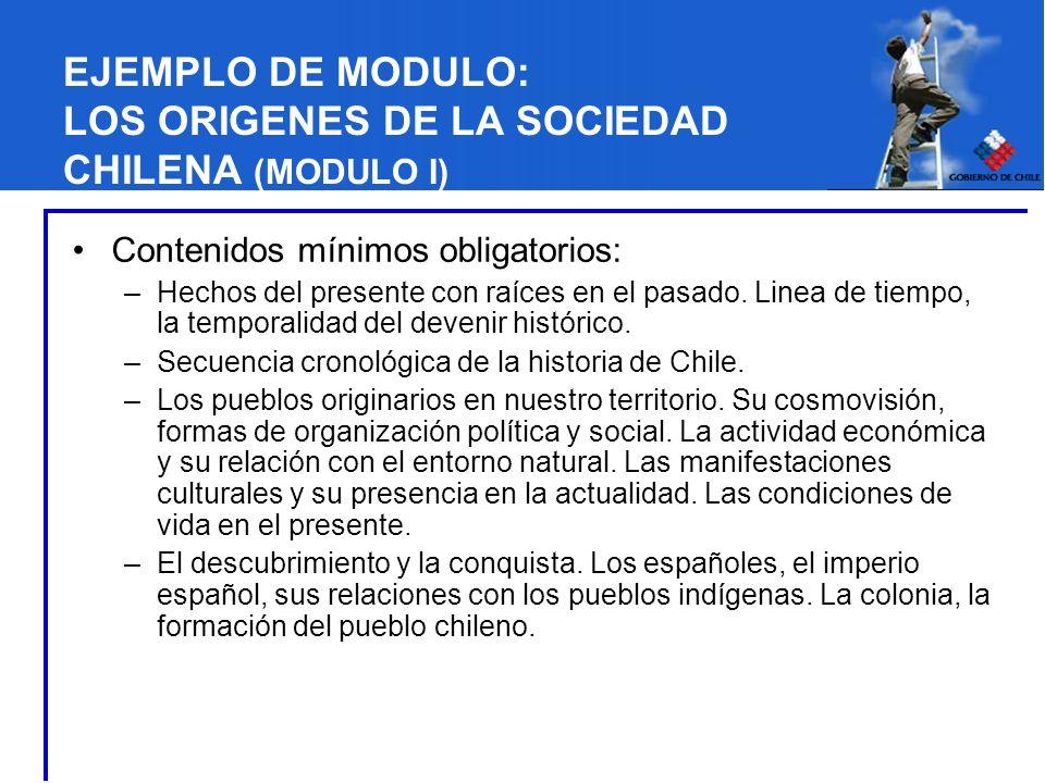 EJEMPLO DE MODULO: LOS ORIGENES DE LA SOCIEDAD CHILENA (MODULO I)