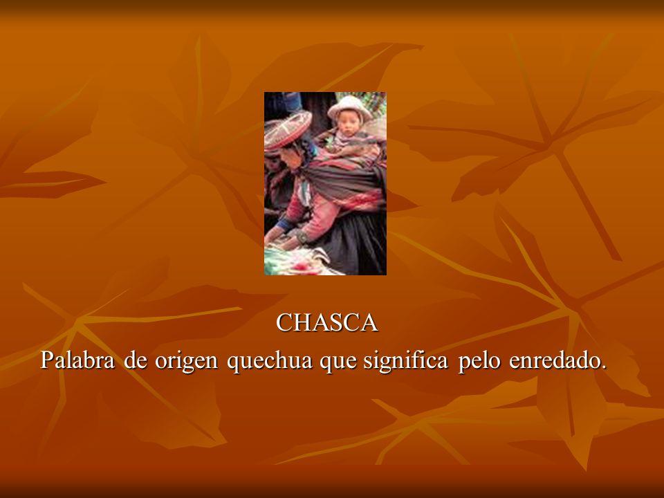 CHASCA Palabra de origen quechua que significa pelo enredado.