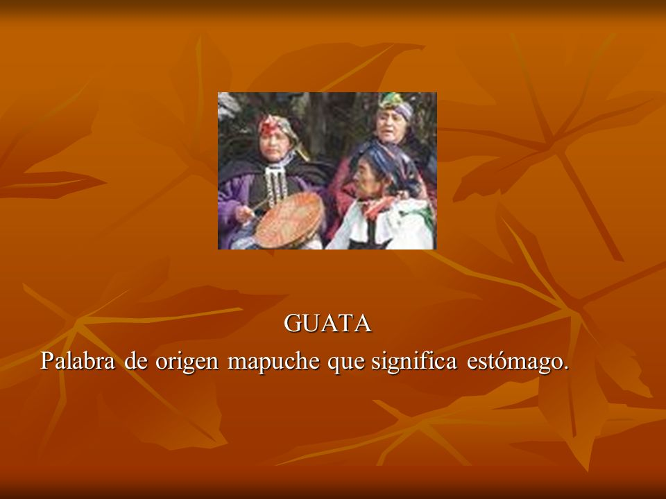 GUATA Palabra de origen mapuche que significa estómago.
